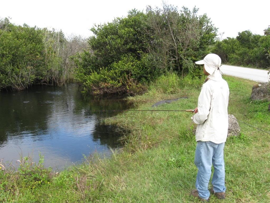 IMG 2794  Florida Road Trip 2012/2013