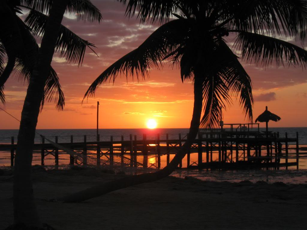 IMG 2886  Florida Road Trip 2012/2013