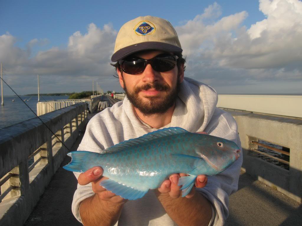 IMG 3139  Florida Road Trip 2012/2013