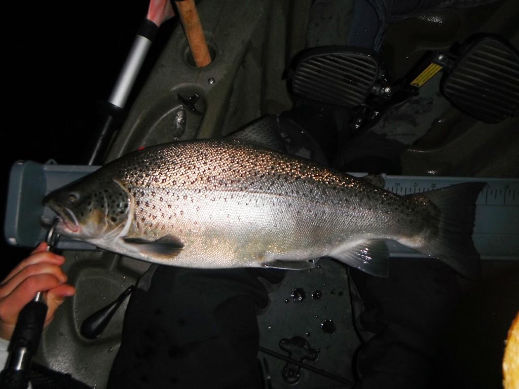 DSCF7361 1024x768 Some fall time fishing