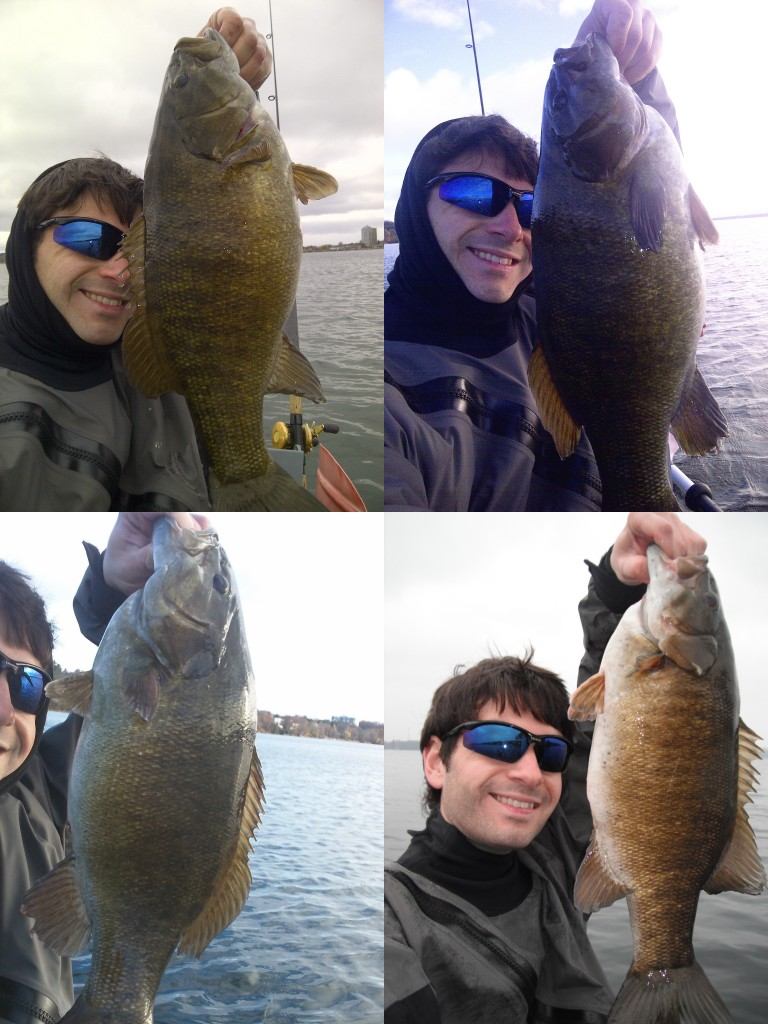 smallies 768x1024 Some fall time fishing