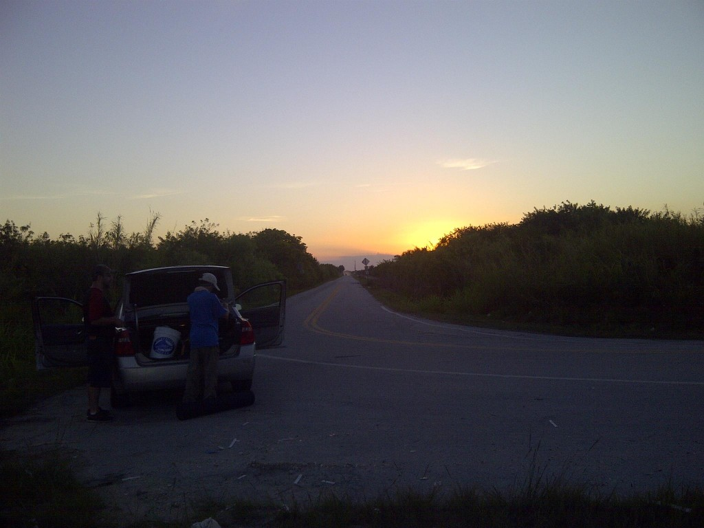 IMG 20150405 00404 1024x768 Florida, Trailer Park Boys, and Parrotfish
