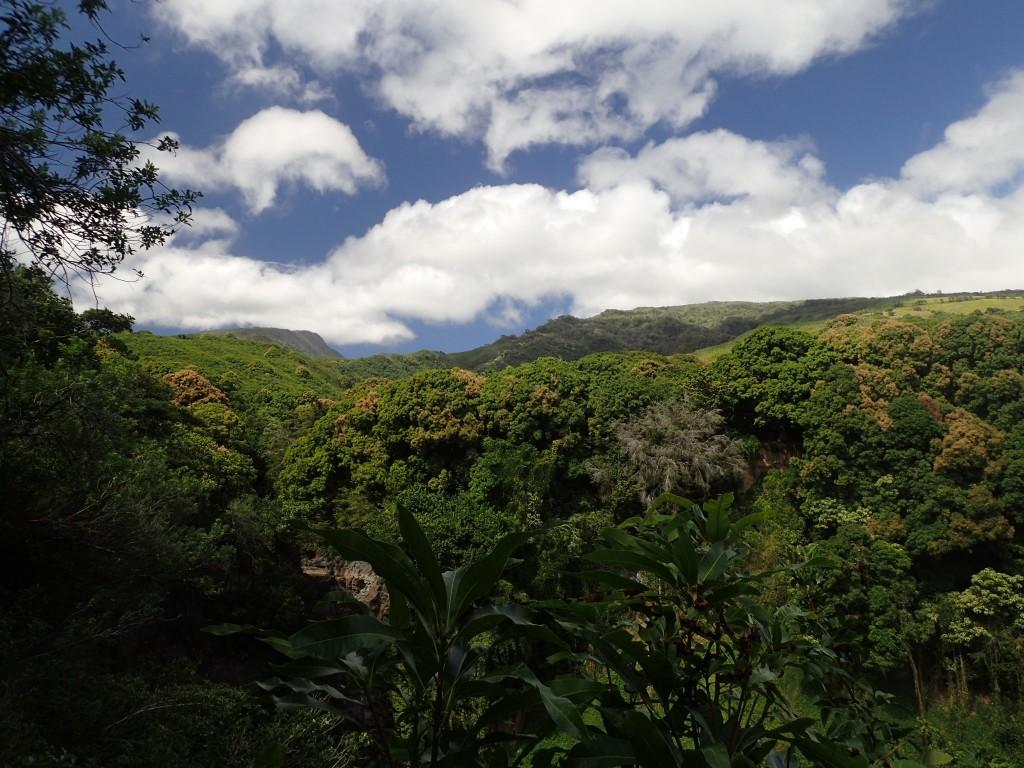 OI000307 1024x768 Three weeks in Hawaii